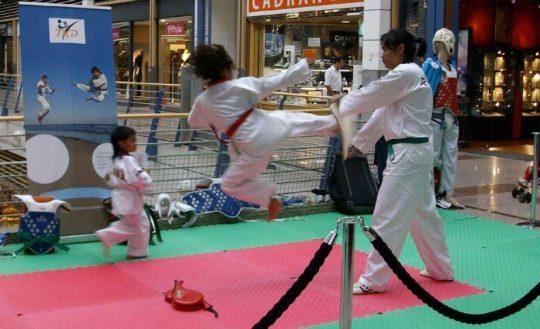 Animation Taekwondo Centre Commercial